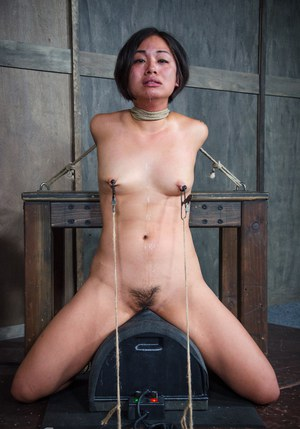 Free Pussy Sybian Porn